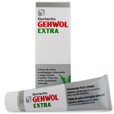 GEHWOL Extra Δραστική προστασία από το κρύο & την υγρασία 75 ml