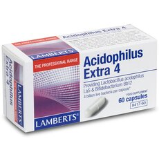 LAMBERTS Acidophilus Extra 4 Προβιοτικό Σκεύασμα 60 Capsules