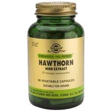 Solgar Hawthorne Herb